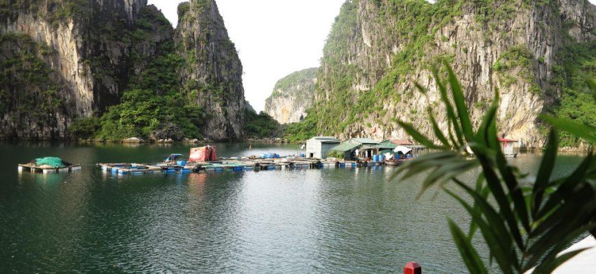Les lieux à découvrir au Cambodge et au Vietnam