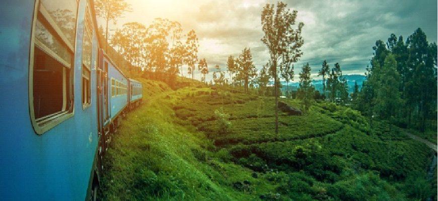 Comment obtenir son visa pour le Sri Lanka ?