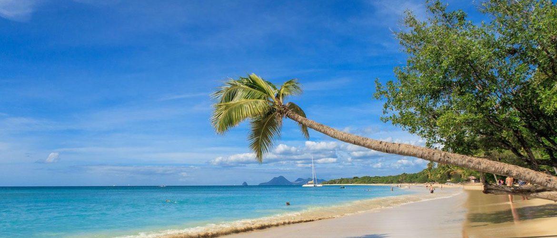 La Martinique : une destination à envisager pour les prochaines vacances de fin d'année