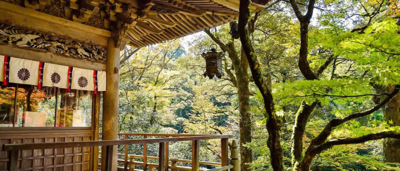 3 bonnes raisons pour lesquelles vous devriez visiter le Japon